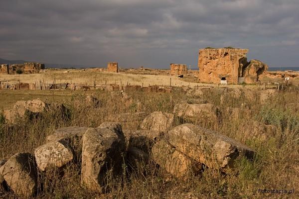 nekropola_zachodnia-2