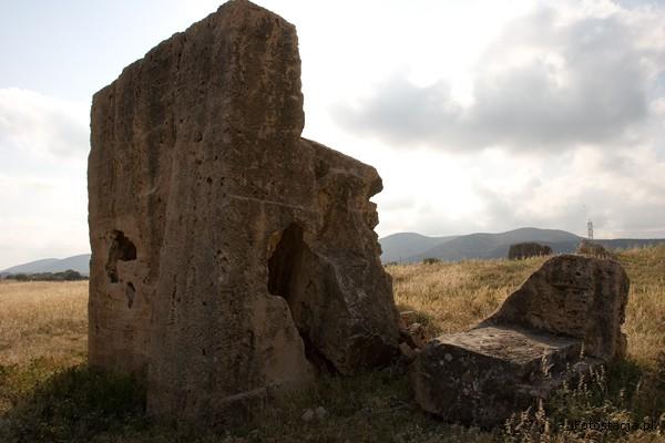 nekropola_zachodnia_2-2